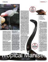 Criaderos Ilegales de Serpientes